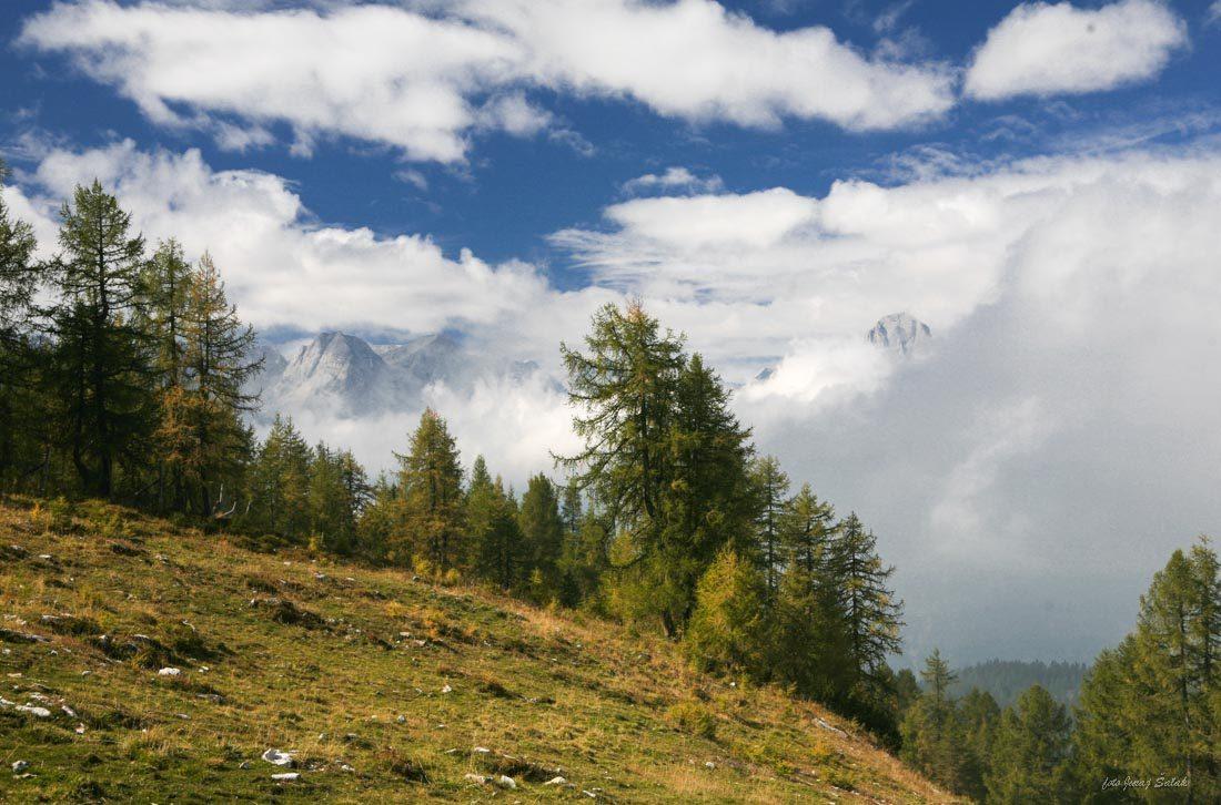 Foto: saljur / Wander Tour / Schrocken N-Grat / Spitze der Spitzmauer / 25.06.2014 12:23:07