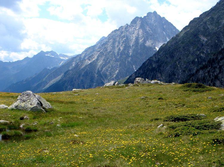 Foto: Manfred Karl / Wandertour / Almerhornrunde / Markanter Gipfel: Der Wildgall / 03.06.2008 16:07:15