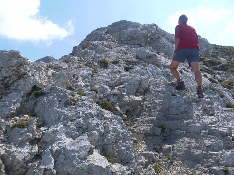 Foto: Wolfgang Lauschensky / Wandertour / Durch das Hinterautal zur Speckkarspitze / 02.07.2017 13:41:41