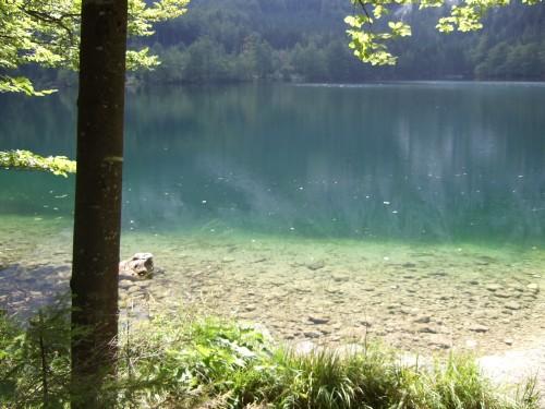 Foto: hofchri / Wander Tour / Brunnkogel-Rundtour über Schafluckensteig / Wanderung von der Talferlklause zum Hinteren Langbathsee / 30.09.2009 20:12:08