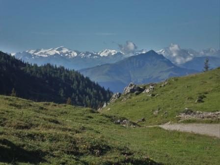Foto: Wolfgang Dröthandl / Wander Tour / Auf das Fellhorn / Eggenalm gegen Venedigergruppe und Kitzbüheler Horn / 23.08.2016 12:37:58