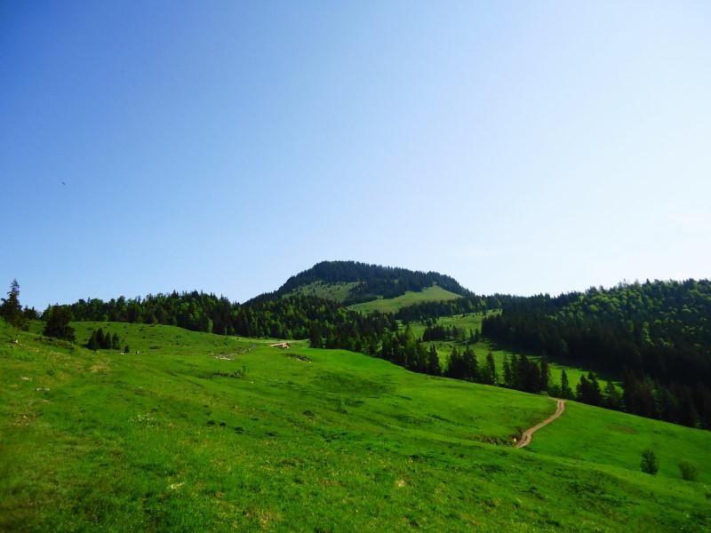 Foto: Günter Siegl / Wander Tour / Über die Goglalm auf den Spitzstein / Spitzstein / 11.06.2016 18:54:32