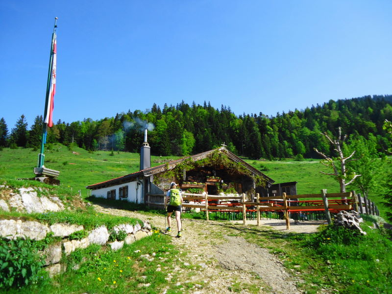 Foto: Günter Siegl / Wander Tour / Über die Goglalm auf den Spitzstein / Goglalm / 11.06.2016 18:54:17