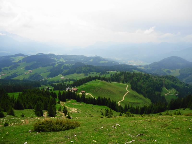Foto: Günter Siegl / Wander Tour / Über die Goglalm auf den Spitzstein / 11.06.2016 18:52:46