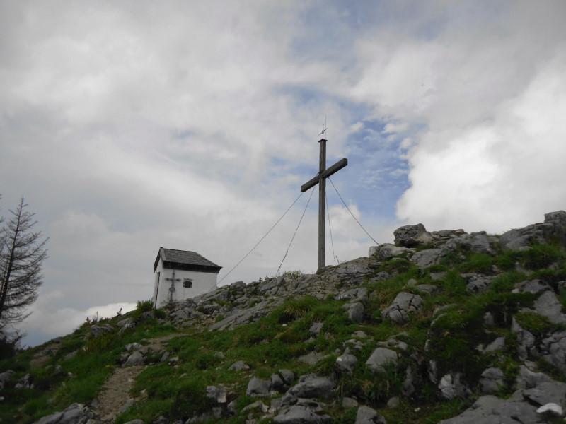 Foto: Günter Siegl / Wander Tour / Über die Goglalm auf den Spitzstein / Spitzstein / 11.06.2016 18:52:37