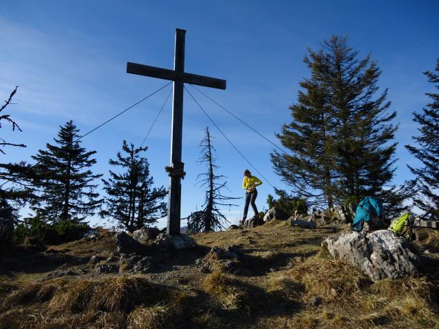 Foto: Günter Siegl / Wander Tour / Von der Viehtaleralm auf die Bodenwies / 20.11.2011 21:43:20
