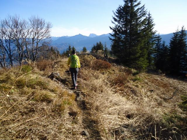 Foto: Günter Siegl / Wander Tour / Von der Viehtaleralm auf die Bodenwies / 20.11.2011 21:42:19