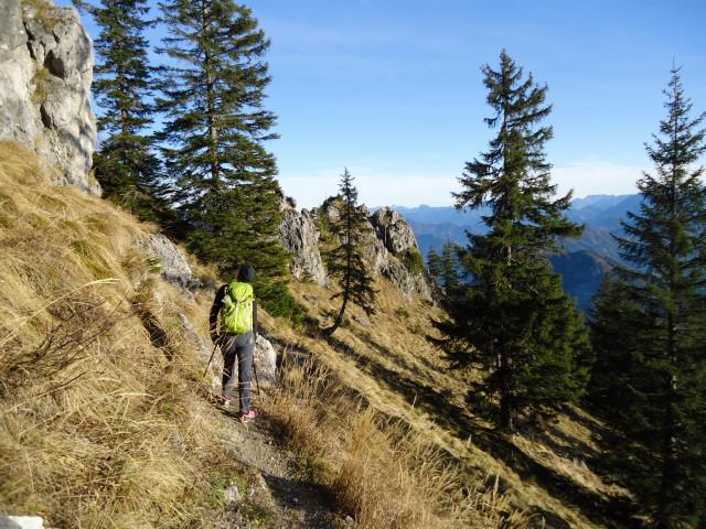 Foto: Günter Siegl / Wander Tour / Von der Viehtaleralm auf die Bodenwies / 20.11.2011 21:41:53