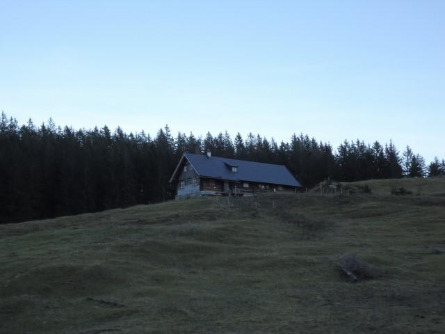 Foto: Günter Siegl / Wander Tour / Von der Viehtaleralm auf die Bodenwies / Menaueralm / 20.11.2011 21:41:39