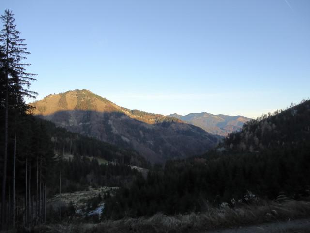 Foto: Günter Siegl / Wander Tour / Von der Viehtaleralm auf die Bodenwies / Kühberg / 20.11.2011 21:40:28