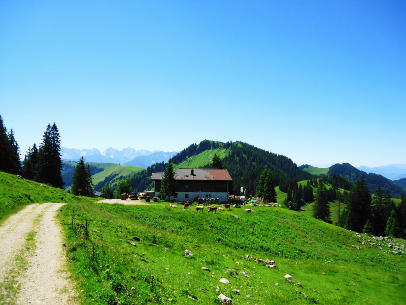 Foto: Günter Siegl / Wandertour / Von Ettenhausen auf den Geigelstein / Priener Hütte / 15.07.2016 21:55:45