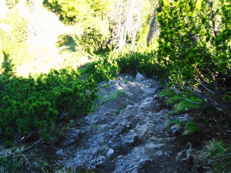 Foto: Günter Siegl / Wander Tour / Vom Ursprungpaß zum Trainsjoch / Auch etwas leichte Kletterei an kurzen Steilstücken ist dabei. / 05.06.2017 22:42:25