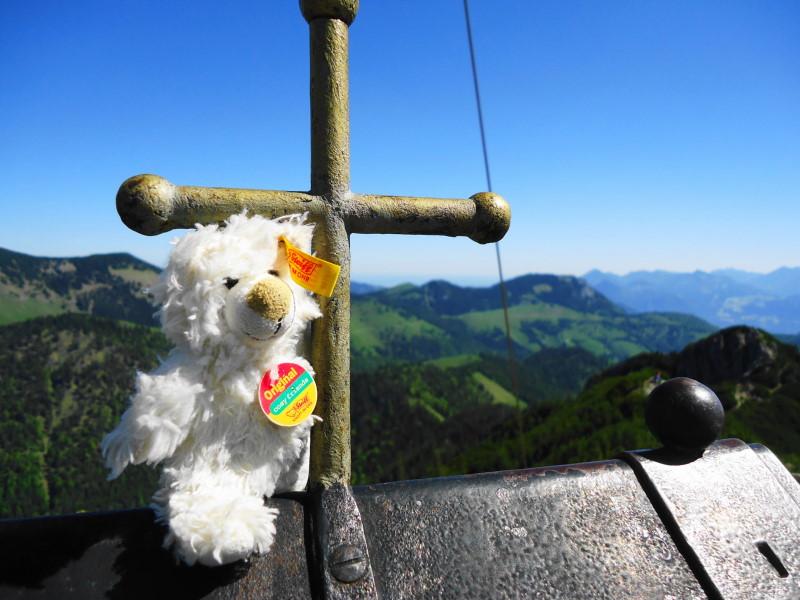 Foto: Günter Siegl / Wander Tour / Vom Ursprungpaß zum Trainsjoch / Happy Basty! / 05.06.2017 22:38:31