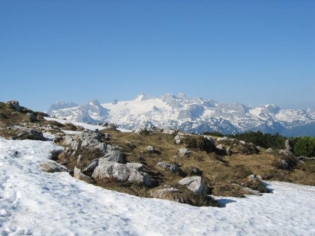 Foto: pepi4813 / Wandertour / Sarstein - Nord-Süd-Überschreitung / Dachsteinblick beim Aufstieg zum Gipfel / 13.07.2009 10:13:54