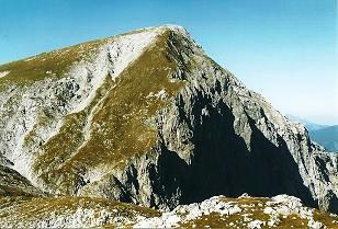 Foto: Wolfgang Dröthandl / Wander Tour / Hohe Weichsel - Runde / Blick auf den Gipfel von Süden (Anstieg erfolgt über den Kamm von links) / 31.01.2011 12:12:41
