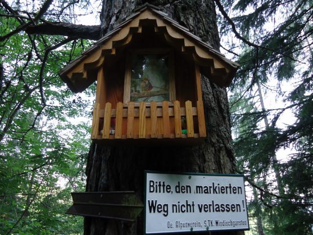 Foto: Günter Siegl / Wander Tour / Vom Gleinkersee auf den Seespitz / 28.07.2012 21:10:48