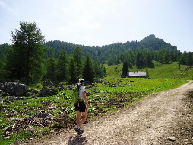 Foto: Günter Siegl / Wander Tour / Vom Gleinkersee auf den Seespitz / Stubwies Almütten / 28.07.2012 21:09:16