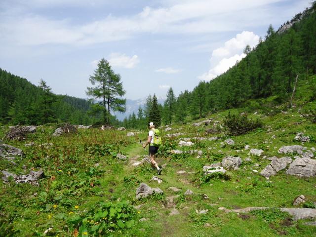 Foto: Günter Siegl / Wander Tour / Vom Gleinkersee auf den Seespitz / Rückweg zum Gleinkersee über die Dümlerhütte / 28.07.2012 21:06:44