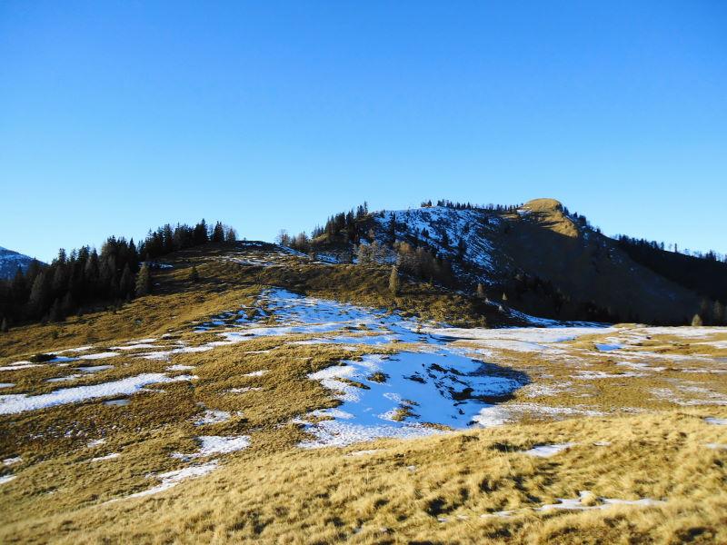 Foto: Günter Siegl / Wander Tour / Von der Postalm auf das Wiesler Horn, 1603m / Gipfelaufbau Wieslerhorn / 28.12.2015 19:57:53