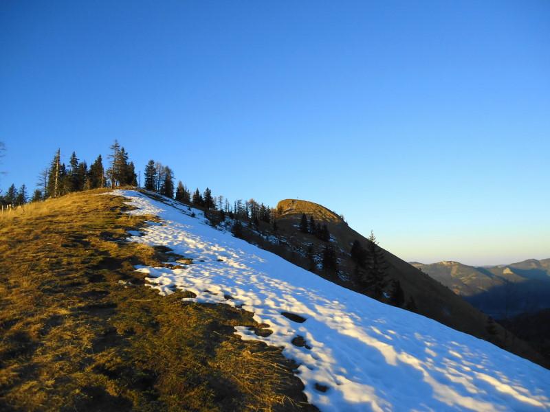 Foto: Günter Siegl / Wander Tour / Von der Postalm auf das Wiesler Horn, 1603m / Rückblick Wieslerhorn / 28.12.2015 19:54:14