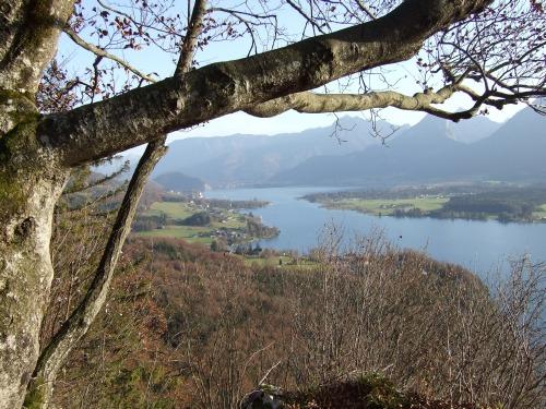 Foto: hofchri / Wander Tour / Von St.Gilgen nach St.Wolfgang auf dem Wallfahrerweg über den Falkenstein, 750m / am Aberseeblick (795 m) / 23.11.2009 20:02:39