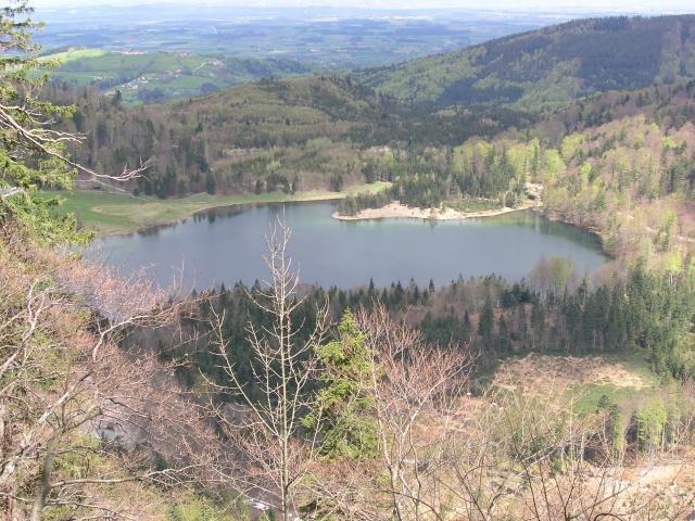 Foto: pepi4813 / Wander Tour / Traunstein-Umrundung vom Grünberg aus über die Hohe Scharte, 1113m / Blick von der Hohen Scharte zum Laudachsee / 09.07.2009 22:26:23