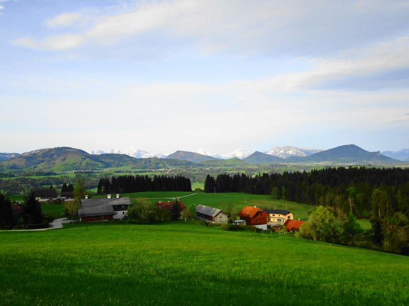 Foto: Günter Siegl / Wander Tour / Von Mondsee auf den Kolomannsberg, 1114m / 07.05.2015 11:02:19