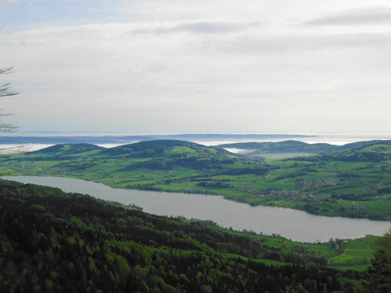 Foto: Günter Siegl / Wander Tour / Von Mondsee auf den Kolomannsberg, 1114m / Irrsee / 07.05.2015 11:00:14