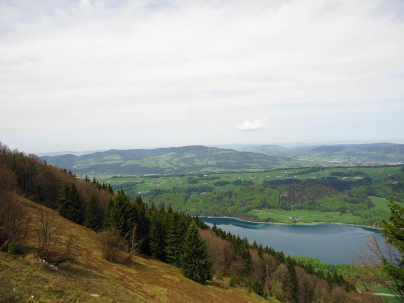Foto: Günter Siegl / Wander Tour / Von Mondsee auf den Kolomannsberg, 1114m / Blick vom Filbling auf den Kolomansberg (Bildmitte) / 07.05.2015 11:02:55
