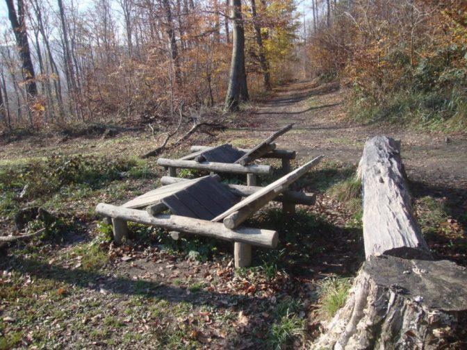 Foto: Wolfgang Dröthandl / Wander Tour / Rundwanderung über Schöffelstein und Rudolfshöhe / Spiel- und Rastplatz 'Blätterdach' unterhalb des Schöffelsteins (Naturpark) / 19.11.2018 11:21:21