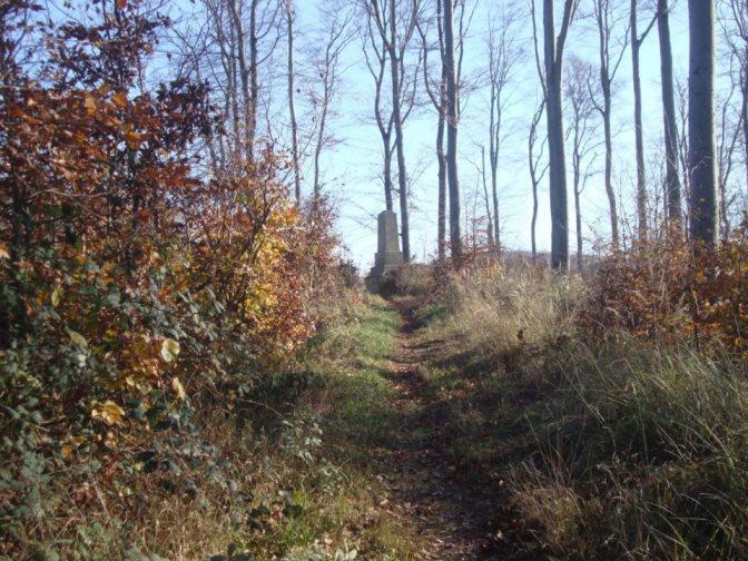 Foto: Wolfgang Dröthandl / Wander Tour / Rundwanderung über Schöffelstein und Rudolfshöhe / Nach kurzem steileren Anstieg: Schöffelstein / 19.11.2018 11:22:26