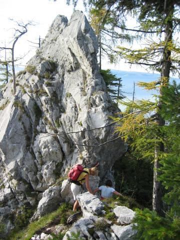 Foto: pepi4813 / Wander Tour / Kleiner Schönberg bei Gmunden / Knapp vor dem Gipfel / 19.07.2009 10:37:58