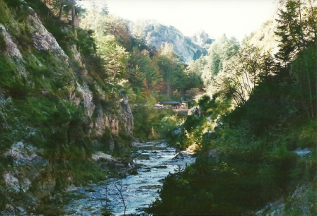 Foto: Wolfgang Dröthandl / Wander Tour / Ötschergräben - Grand Canyon Niederösterreichs / Auf dem Weg zum nahen Ötscherhias, 1. 10. 2011 / 09.11.2011 17:50:08