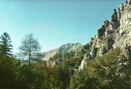 Foto: Wolfgang Dröthandl / Wander Tour / Ötschergräben - Grand Canyon Niederösterreichs / Blick auf den Ötscher, Standort knapp oberhalb Ötscherhias; 1. 10. 2011 / 09.11.2011 17:49:34