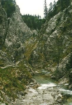 Foto: Wolfgang Dröthandl / Wander Tour / Ötschergräben - Grand Canyon Niederösterreichs / In den hinteren Ötschergräben auf dem Weg zum Vorderötscher / 16.05.2011 16:36:34
