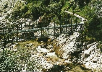 Foto: Wolfgang Dröthandl / Wander Tour / Ötschergräben - Grand Canyon Niederösterreichs / Steg im ersten Wegabschnitt - Stierwaschmäuer / 16.05.2011 16:28:10