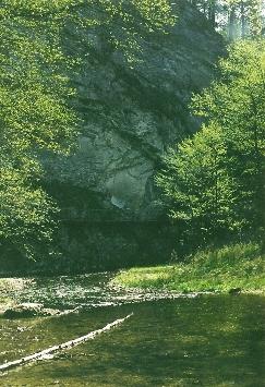 Foto: Wolfgang Dröthandl / Wander Tour / Durch die Raabklamm ´die längste Schlucht Österreichs´ / Raabklamm, erster Abschnitt / 16.05.2011 16:05:02