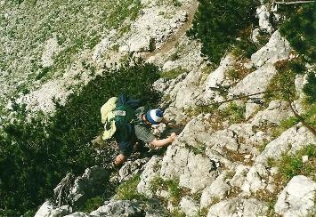 Foto: Wolfgang Dröthandl / Wander Tour / Von Kulm auf den Grimming / Steinschlaggefährdete Steilstufe durch die Latschen hinunter in den Stribinggraben / 16.05.2011 14:17:54