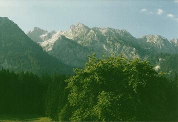 Foto: Wolfgang Dröthandl / Wander Tour / Von Kulm auf den Grimming / Blick vom Kulm Richtung Stribinggraben, links Großes Kar und Schartenspitze / 16.05.2011 14:38:02