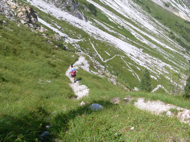 Foto: Wolfgang Lauschensky / Wander Tour / Neukarsee und Faulkogel / Abstieg zur Ursprungalm / 05.08.2012 22:16:56