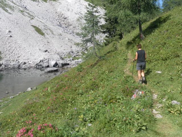 Foto: Wolfgang Lauschensky / Wander Tour / Blauer See und Ennskraxen / am Blauen See / 22.07.2011 17:55:29