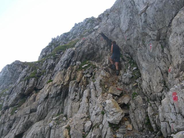 Foto: Wolfgang Lauschensky / Wander Tour / Blauer See und Ennskraxen / kurze leichte Klettersteigeinlagen / 22.07.2011 17:54:06