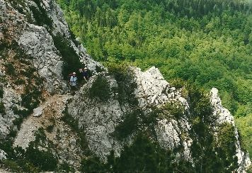 Foto: Wolfgang Dröthandl / Wander Tour / Vom Bodental auf den Hochstuhl / Stinzesteig - schwierigster Abschnitt des Aufstiegs zur Klagenfurter Hütte / 16.05.2011 17:09:20