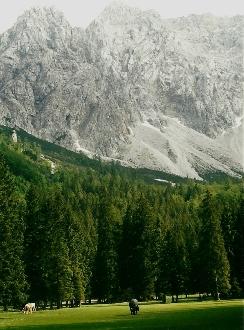 Foto: Wolfgang Dröthandl / Wander Tour / Vom Bodental auf den Hochstuhl / Märchenwiese im hintersten Bodental gegen Vertatscha / 16.05.2011 17:10:04