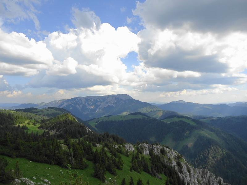 Foto: Günter Siegl / Wander Tour / Vom Niederalpl auf den (die) Tonion / Veitsch / 13.06.2014 15:10:21