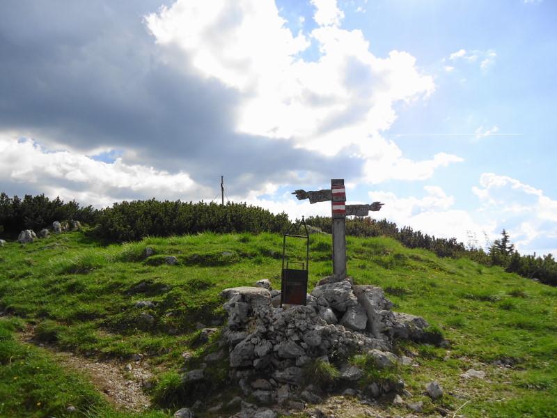 Foto: Günter Siegl / Wander Tour / Vom Niederalpl auf den (die) Tonion / 13.06.2014 15:11:04