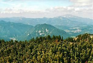 Foto: Wolfgang Dröthandl / Wander Tour / Vom Niederalpl auf den (die) Tonion / Blick vom Gipfel auf Gusswerk, Sauwand, Gemeindealpe, Ötscher und Mariazell / 31.01.2011 12:32:20