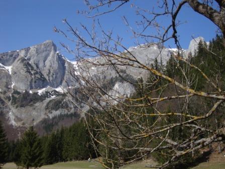 Foto: Wolfgang Dröthandl / Wander Tour / Hochschwabrunde übers G´hackte / Zinken vom Ameisenlehrpfad Bodenbauer / 01.04.2014 14:46:55