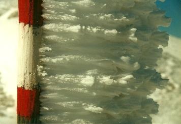 Foto: Wolfgang Dröthandl / Wander Tour / Hochschwabrunde übers G´hackte / Bizarre windgeformte Schneeformationen auf den Stangenmarkierungen... / 16.05.2011 15:19:35