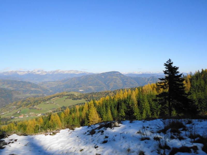 Foto: Günter Siegl / Wander Tour / Von Oberwölz auf den Pleschaitz / Blick zum Pleschaitz vom Karchauer Eck / 08.11.2014 18:32:15